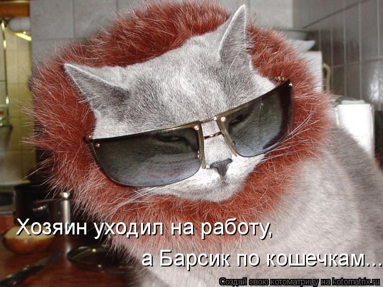 Котоматрица: Хозяин уходил на работу,  а Барсик по кошечкам...