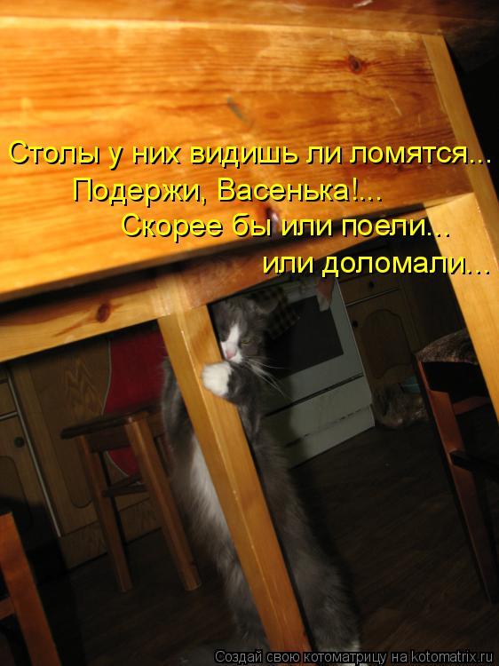 Котоматрица: Столы у них видишь ли ломятся... Подержи, Васенька!... Скорее бы или поели... или доломали...
