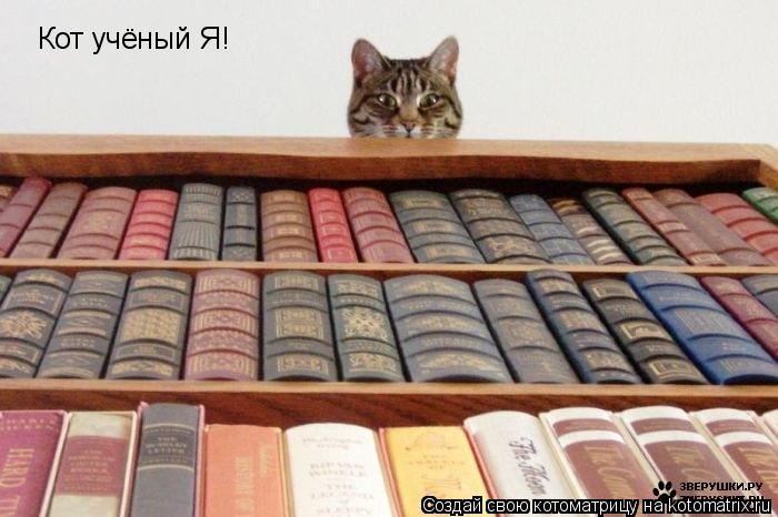 Котоматрица: Кот учёный Я!