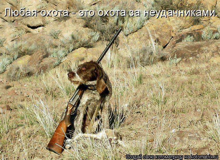 Котоматрица: Любая охота - это охота за неудачниками.