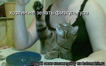Котоматрица: хозяин не зевать физкультура