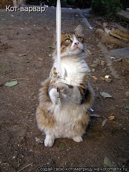 Котоматрица: Кот-варвар.