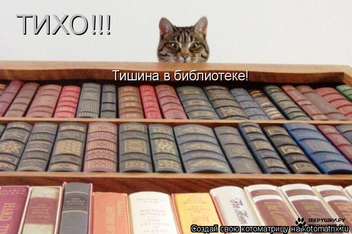 Котоматрица: ТИХО!!! Тишина в библиотеке!
