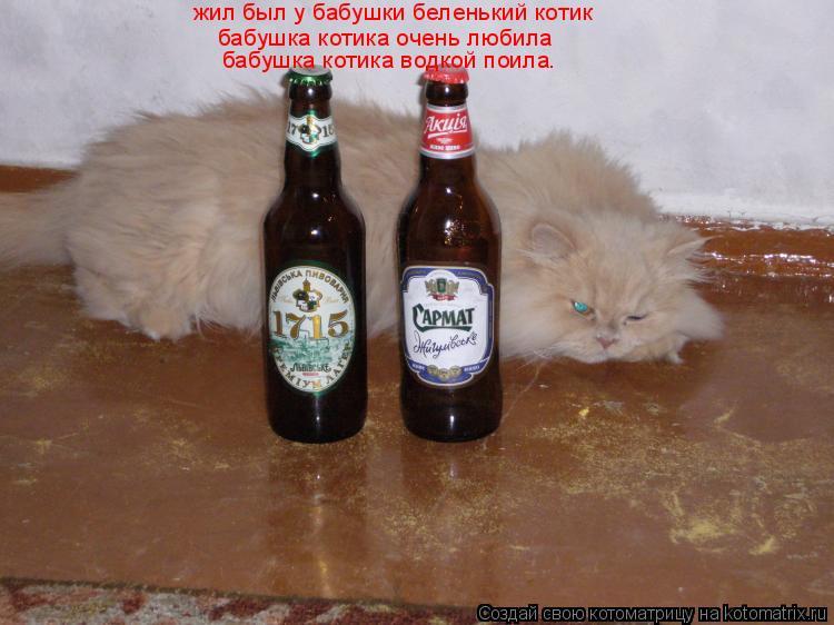 Котоматрица: жил был у бабушки беленький котик бабушка котика очень любила бабушка котика водкой поила жил был у бабушки беленький котик  бабушка котик