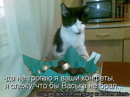 Котоматрица: -да не трогаю я ваши конфеты, я слежу, что бы Васька не брал...
