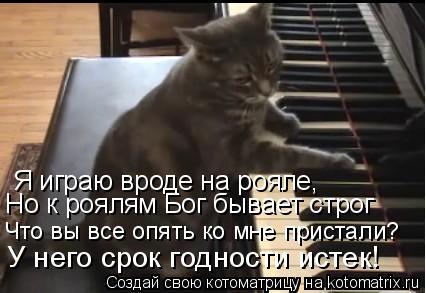Котоматрица: Я играю вроде на рояле, Но к роялям Бог бывает строг Что вы все опять ко мне пристали? У него срок годности истек!