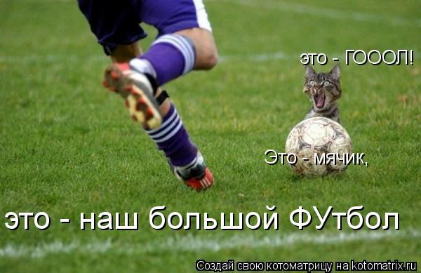 Котоматрица: Это - мячик,  это - ГОООЛ!  это - наш большой ФУтбол