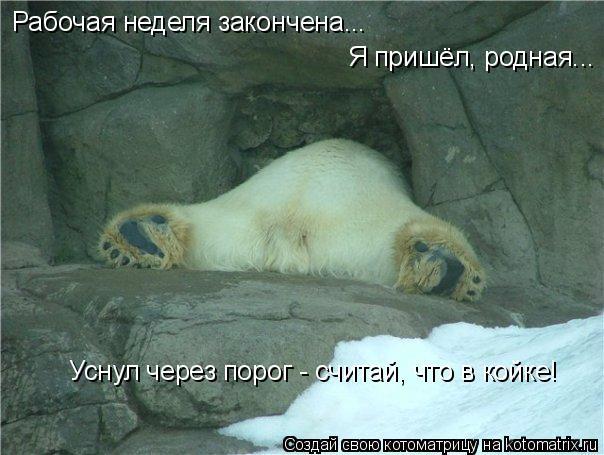 Котоматрица: Рабочая неделя закончена... Я пришёл, родная... Уснул через порог - считай, что в койке!