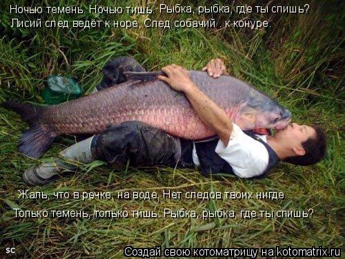 Котоматрица: Ночью темень. Ночью тишь. Рыбка, рыбка, где ты спишь? Лисий след ведёт к норе, След собачий — к конуре. Жаль, что в речке, на воде, Нет следов тв