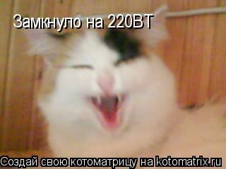 Котоматрица: Замкнуло на 220ВТ