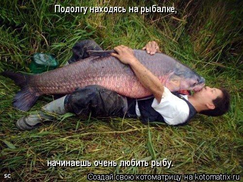 Котоматрица: Подолгу находясь на рыбалке, начинаешь очень любить рыбу.