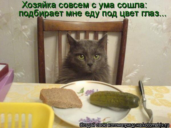 Котоматрица: Хозяйка совсем с ума сошла:  подбирает мне еду под цвет глаз...