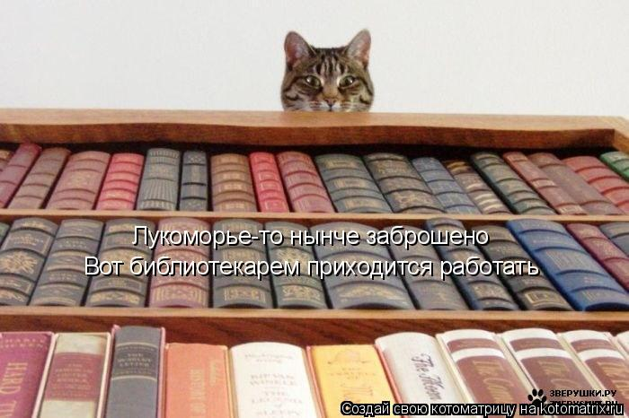 Котоматрица: Лукоморье-то нынче заброшено Вот библиотекарем приходится работать