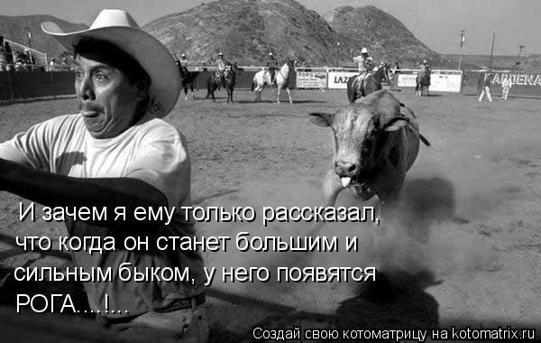 Котоматрица: И зачем я ему только рассказал, что когда он станет большим и сильным быком, у него появятся РОГА....!...