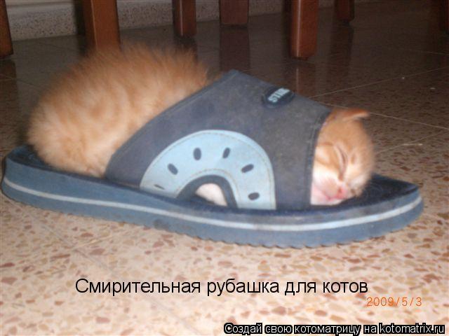 Котоматрица: Смирительная рубашка для котов