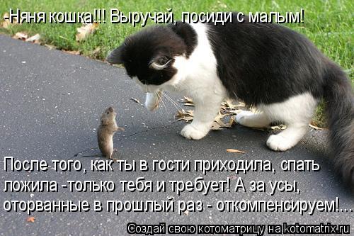 Котоматрица: -Няня кошка!!! Выручай, посиди с малым! После того, как ты в гости приходила, спать  ложила -только тебя и требует! А за усы,  оторванные в прошлы