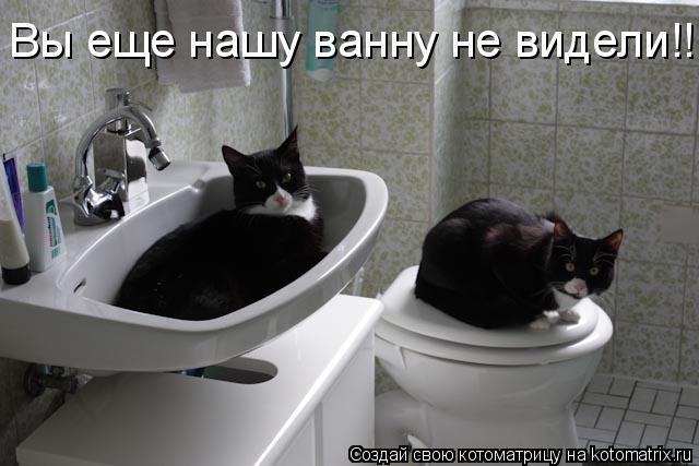 Котоматрица: Вы еще нашу ванну не видели!!!