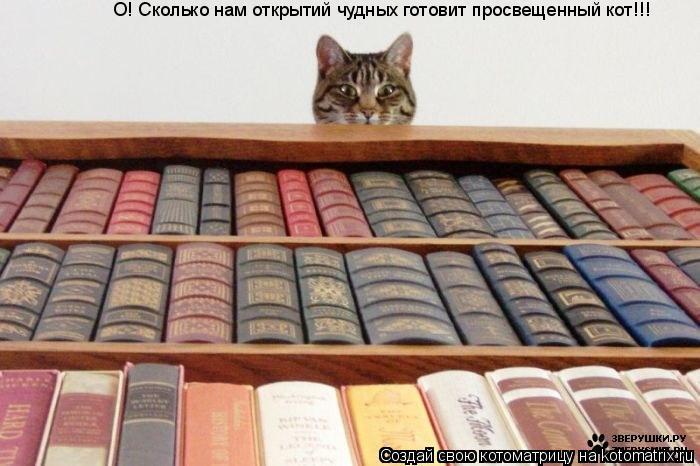 Котоматрица: О! Сколько нам открытий чудных готовит просвещенный кот!!!