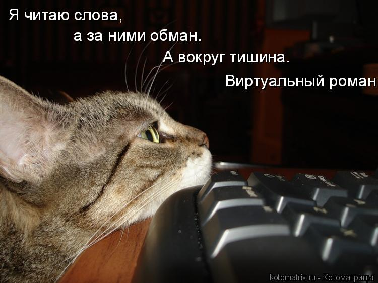 Котоматрица: Я читаю слова, а за ними обман. А вокруг тишина.  Виртуальный роман