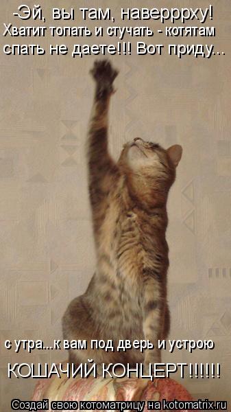 Котоматрица: -Эй, вы там, наверррху! Хватит топать и стучать - котятам  спать не даете!!! Вот приду... с утра...к вам под дверь и устрою КОШАЧИЙ КОНЦЕРТ!!!!!!