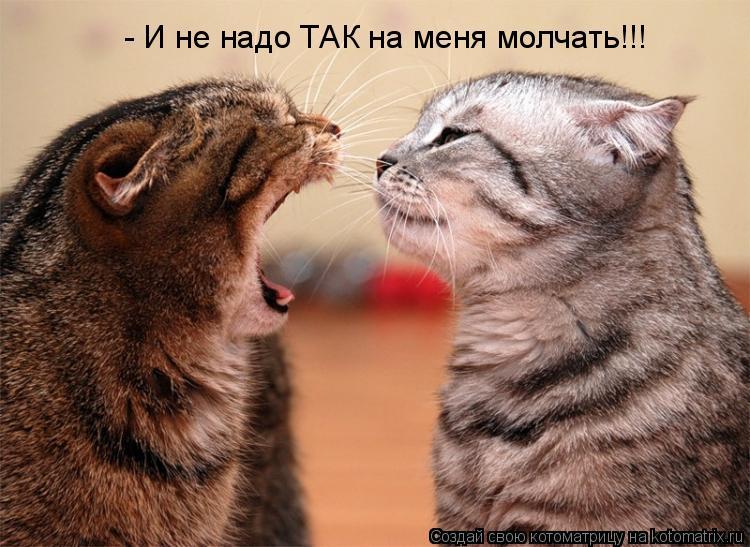 Котоматрица: - И не надо ТАК на меня молчать!!!