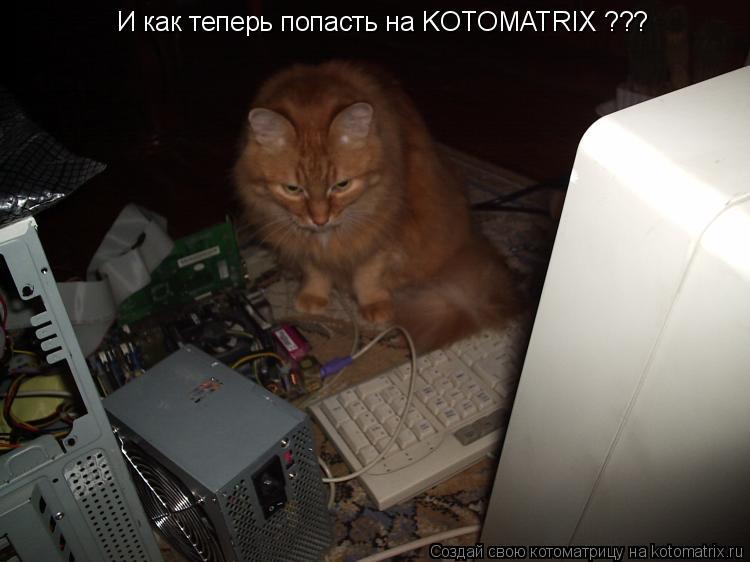 Котоматрица: И как теперь попасть на KOTOMATRIX ???