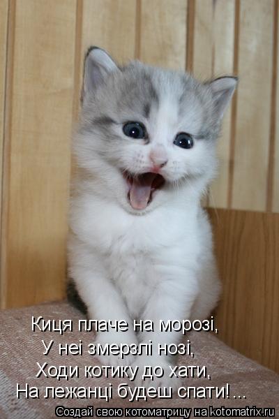 Котоматрица: Ходи котику до хати, У неi змерзлi нозi, Киця плаче на морозi, На лежанцi будеш спати! ...
