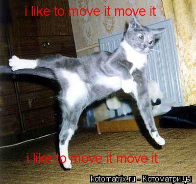 Котоматрица: i like to move it move it i like to move it move it