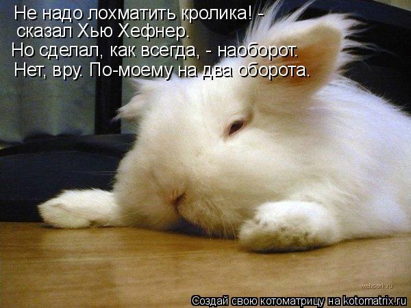 Котоматрица: Не надо лохматить кролика! -  сказал Хью Хефнер. Но сделал, как всегда, - наоборот. Нет, вру. По-моему на два оборота.
