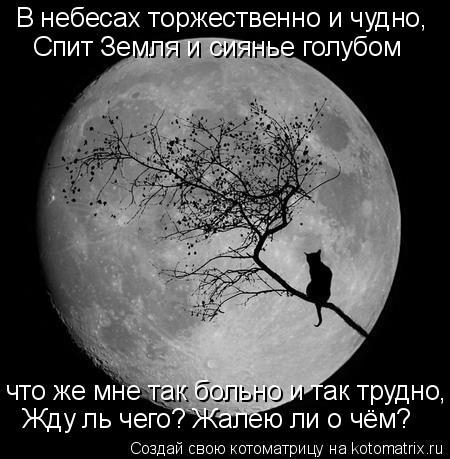 Котоматрица: В небесах торжественно и чудно, Спит Земля и сиянье голубом что же мне так больно и так трудно, Жду ль чего? Жалею ли о чём?
