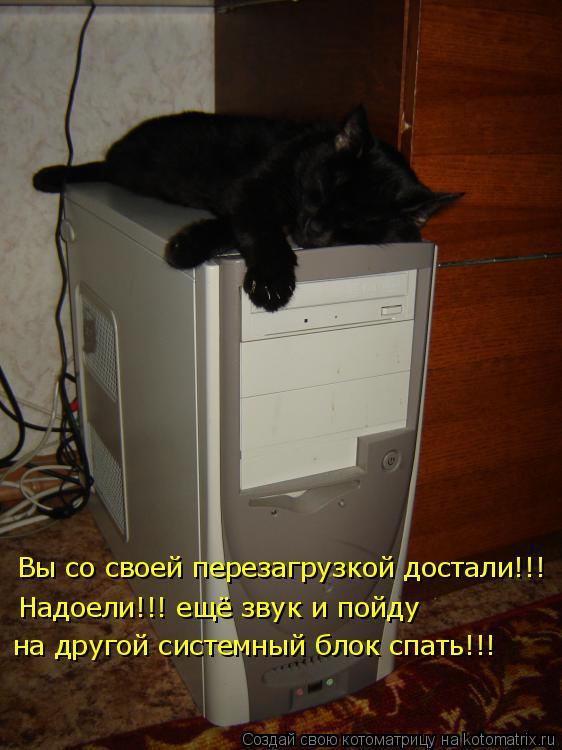 Котоматрица: Вы со своей перезагрузкой достали!!!  Надоели!!! ещё звук и пойду на другой системный блок спать!!!