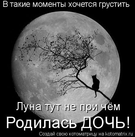Котоматрица: В такие моменты хочется грустить Луна тут не при чём Родилась ДОЧЬ!