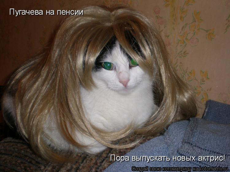 Котоматрица: Пугачева на пенсии Пора выпускать новых актрис!