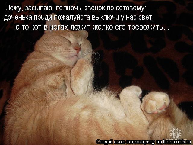 Котоматрица: Лежу, засыпаю, полночь, звонок по сотовому: доченька прuди пожалуйста выключu у нас свет, а то кот в ногах лежит жалко его тревожить...