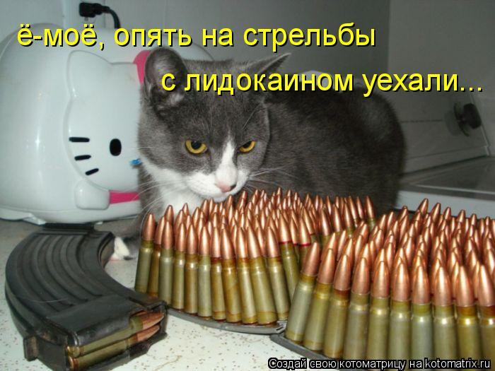Котоматрица: ё-моё, опять на стрельбы с лидокаином уехали...