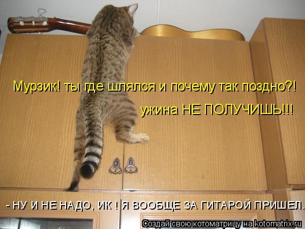 Котоматрица: Мурзик! ты где шлялся и почему так поздно?! ужина НЕ ПОЛУЧИШЬ!!! - НУ И НЕ НАДО, ИК ! Я ВООБЩЕ ЗА ГИТАРОЙ ПРИШЕЛ...