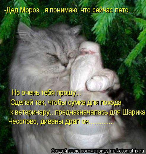 Котоматрица: -Дед Мороз...я понимаю, что сейчас лето... Но очень тебя прошу... Сделай так, чтобы сумка для похода  к ветеринару...предназначалась для Шарика...