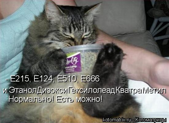 Котоматрица: - Е215, Е124, Е510, Е666  и ЭтанолДизоксиГексилолеадКватраМетил Нормально! Есть можно!