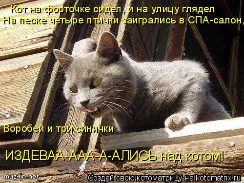 Котоматрица: Кот на форточке сидел, и на улицу глядел На песке четыре птички заигрались в СПА-салон, Воробей и три синички ИЗДЕВАА-ААА-А-АЛИСЬ над котом!