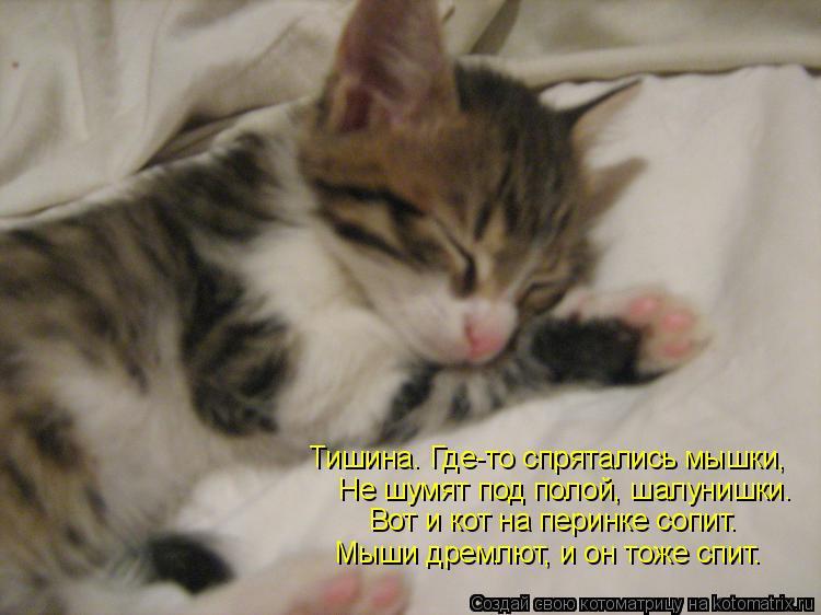 Котоматрица: Не шумят под полой, шалунишки. Тишина. Где-то спрятались мышки, Вот и кот на перинке сопит. Мыши дремлют, и он тоже спит.