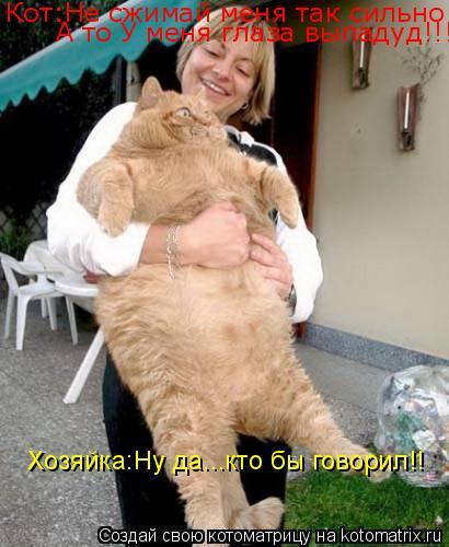 Котоматрица: Кот:Не сжимай меня так сильно!!! А то У меня глаза выпадуд!!! Хозяйка:Ну да...кто бы говорил!!