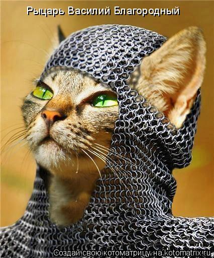 Котоматрица: Рыцарь Василий Благородный