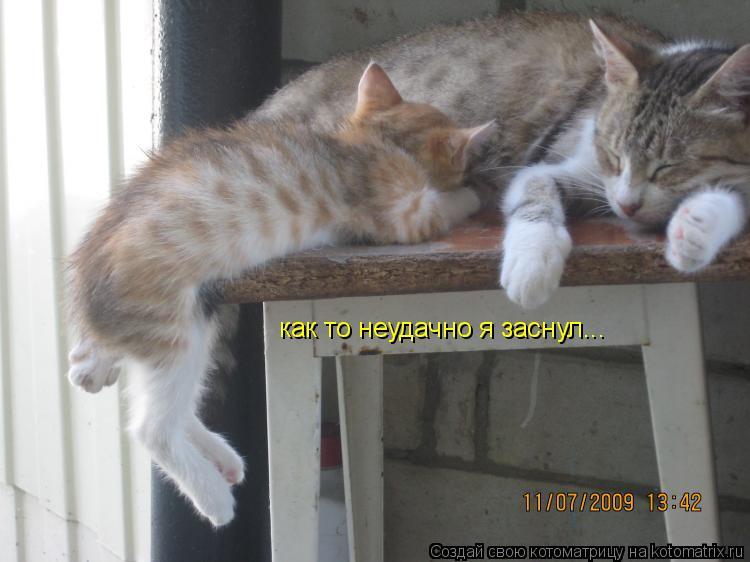 Котоматрица: как то неудачно я заснул...