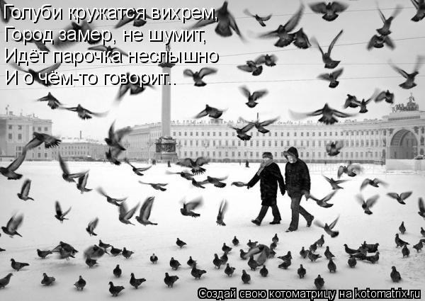 Котоматрица: Голуби кружатся вихрем, Город замер, не шумит, Идёт парочка неслышно И о чём-то говорит..