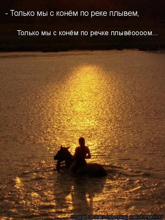 Котоматрица: - Только мы с конём по реке плывем,  Только мы с конём по речке плывёоооом...