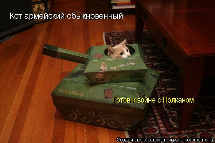 Котоматрица: Кот армейский обыкновенный Готов к войне с Полканом!
