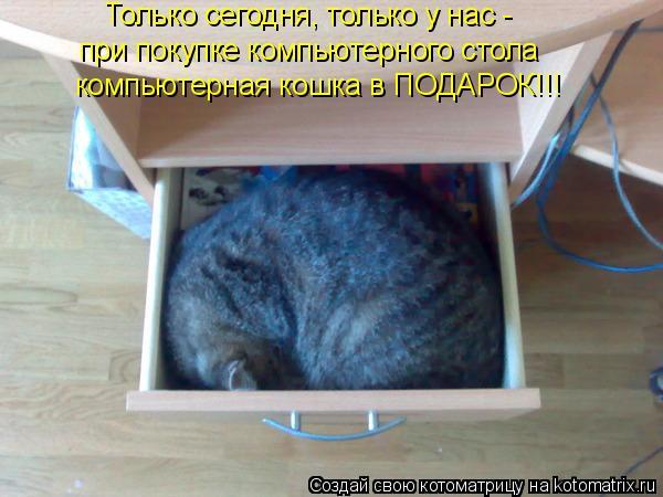 Котоматрица: Только сегодня, только у нас - при покупке компьютерного стола компьютерная кошка в ПОДАРОК!!!
