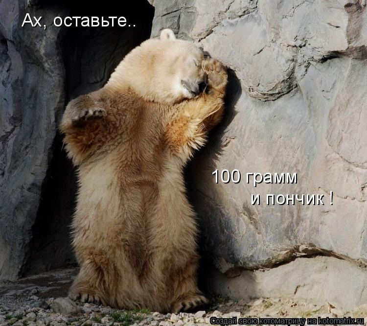 Котоматрица: Ах, оставьте.. 100 грамм  и пончик !