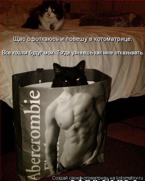 Котоматрица: Щас сфоткаюсь и повешу в котоматрице. Все кошки будут мои. Тогда узнаешь как мне отказывать.