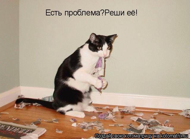 Котоматрица: Есть проблема?Реши её!